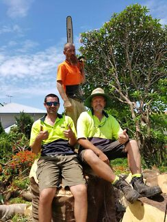 The Guy Tree Lopping Services