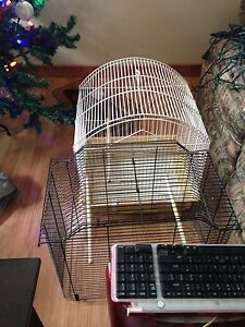 4 cage