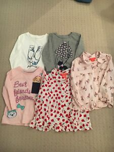 Girl Long Sleeve Tops size 2T