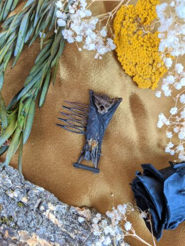Y47b Taxidermy Oddities Curiosities real Bat Comb Hair barrett Gothic Witch