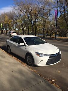 Toyota Camry LE 2015 Hybrid