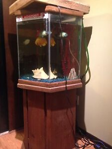 Tank and stand for sale maybe a few fish