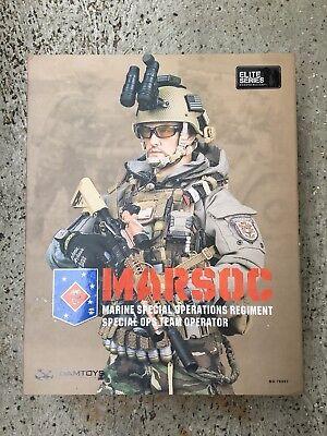 1/6 Figur DAMToys Dam Toys 1:6 MARSOC Marines Figure KSK