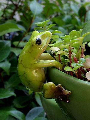 Miniature FAIRY GARDEN ~ Frog Flower Pot Hugger ~ NEW