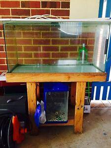 Fish tank for sale East Victoria Park Victoria Park Area Preview