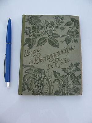 1896 Unsere Beerengewächse. Bestimmung und Beschreibung der einheimischen Beeren