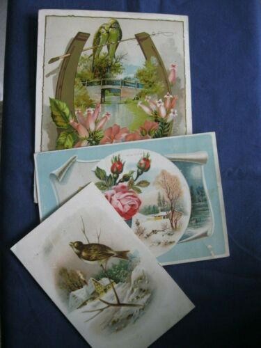 Victorian Trade Card Lion Coffee BUFFORD Art Parakeets Horseshoe Birds  G