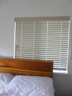 Venetian Blind Bethania Logan Area Preview