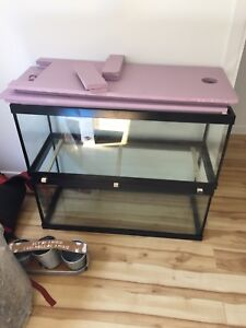 20 gallon tanks.  50 for one 80 for both. OBO takes them.