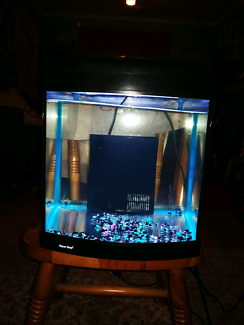 28 litre Aqua one tank with filter