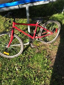 Bicycle $50 obo