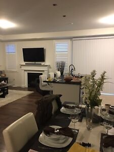 California Shutters Zebra Shades Blinds