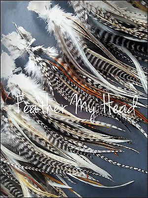 """25 Natural Wide Accent Feathers With Fluff 5""""-7"""" (13cm-18cm) 25 Loose Feathers"""