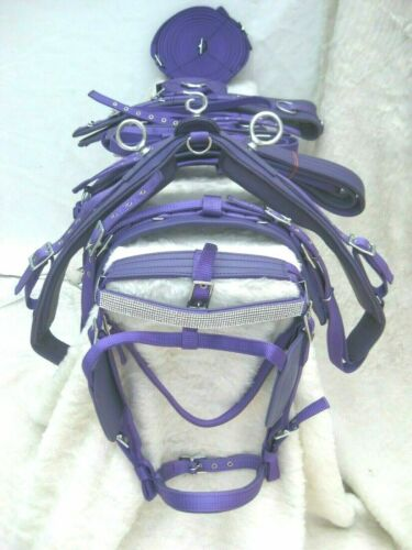DRIVING HARNESS SINGLE HORSE IN FOR NYLON,PURPLE COLOUR SIZES FULL, COB,PONY
