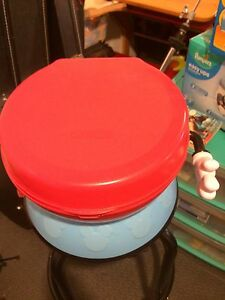 Mickey Mouse Clubhouse training potty/stool