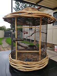 Funky Cage 4sale Bankstown Bankstown Area Preview