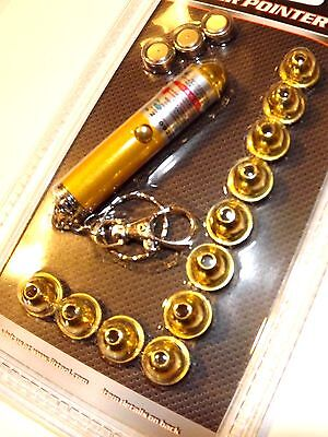 * Laser Pointer Kit_12 In 1_Key Chain_Office_Cat_Dog_Home Entry_School_Party_5mW