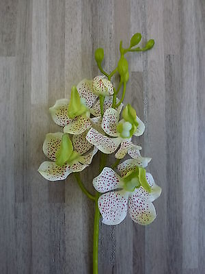 12 x Orchidee 12tlg. Set Seidenblume Kunstpflanze 35 cm creme grün 182272 F3