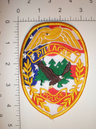 MN Minnesota PILLAGER Police patch - BALD EAGLE - Patriotic US Flag