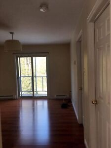 Single bedroom apartment inQuispamsis for rent June 1