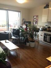 Very good appartment in the heart of Footscray Footscray Maribyrnong Area Preview