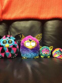 Furby boom  Stockton Newcastle Area Preview