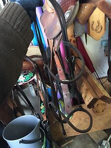 Horse tack room clean out!  Strathcona County Edmonton Area image 10