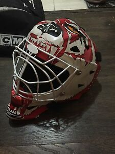 Itech painted sr. hockey goalie mask