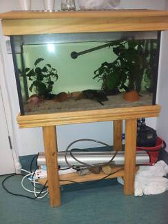 2.5 ft aquarium with stand and hood Sunshine North Brimbank Area Preview