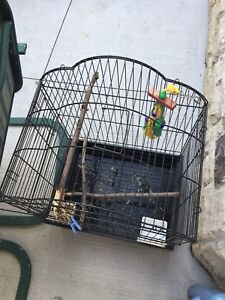 Birds cage canary  parrot