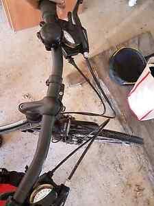 Bikes and children's bike carriage Saumarez Ponds Uralla Area Preview