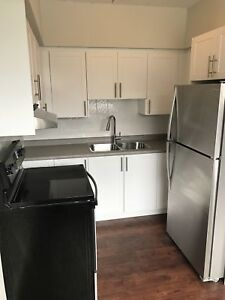 Newly Renovated 2 Bedroom in Dundas Community