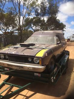 Ford Xc rally pack Panelvan gs