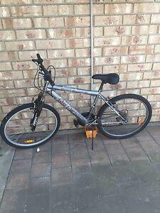 Bicycle Flinders Park Charles Sturt Area Preview