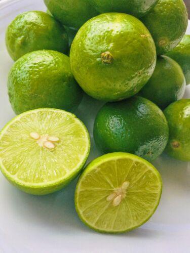 KEJORA Fresh Key Limes