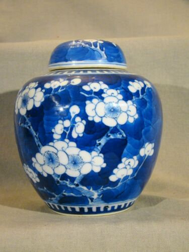Fine Chinese Porcelain Blue & White Prunus Ovoid Covered Jar Vase Kangxi Mark