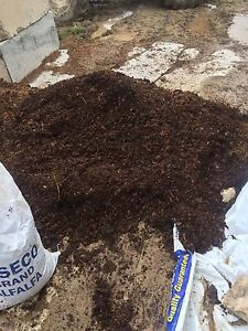 Composted horse manure