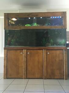 6ft FISH TANK FOR SALE North Lakes Pine Rivers Area Preview