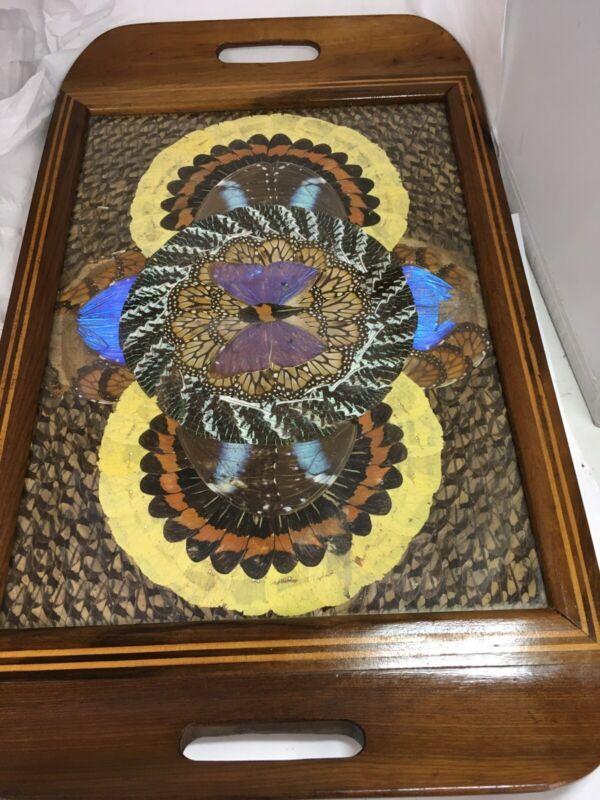 "Antique Butterfly Wings Wood Tray Brazil 19""/11"""