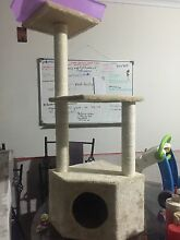 3 story cat tree Munno Para Playford Area Preview