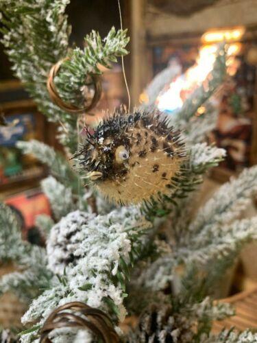 "NEW 2"" Christmas Ornament Puffer Fish Set of 5 Tiki bar Smokin OFFER"