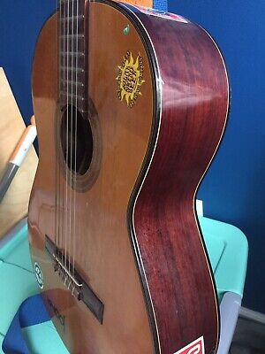 Ariana Guitar A587   6 String-used