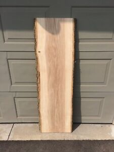 Live Edge Ash Slab 17in wide