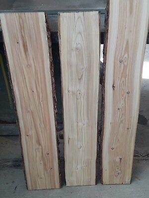 3 Lärchenbretter 100 cm Länge 26 mm Dicke 2-seitig gehobelt  getrocknet