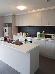 Friendly, cozy home for share Sebastopol Ballarat City Preview