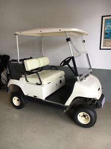 Electric golf cart Yamaha