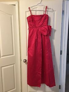 Size 10 new long dress