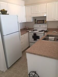 *Beautiful 1 bed 1 bath for mid-November! Has in suite laundry!*