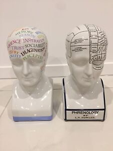 Phrenology Heads - Decorative Carindale Brisbane South East Preview