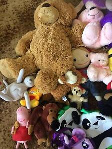 Soft toys in great-excellent condition Ecklin South Corangamite Area Preview